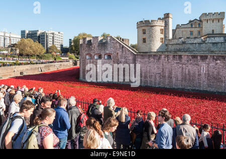 Crowds viewing red ceramic poppies at The Tower Of London Remembers exhibition, Blood Swept Lands and Seas of Red - Stock Photo