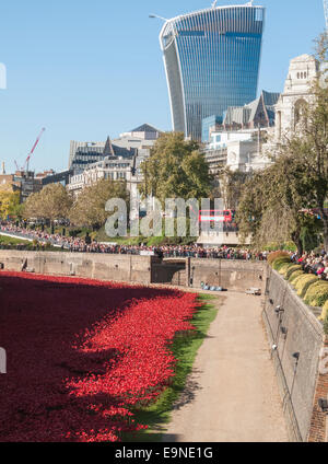 Red ceramic poppies at The Tower Of London Remembers exhibition, Blood Swept Lands and Seas of Red, with Walkie - Stock Photo