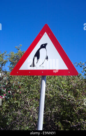 African penguin road warning sign, Spheniscus demersus, Table Mountain National park, Cape Town, South Africa - Stock Photo
