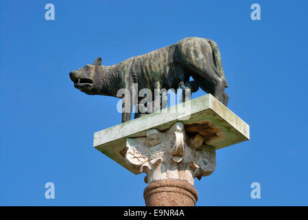 Romulus and Remus with wolf statue on a column in Pisa, Italy - Stock Photo