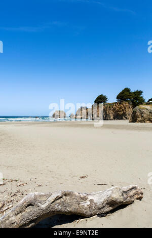 Beach on State Route 1 just north of Fort Bragg, Mendocino County, Northern California, USA - Stock Photo
