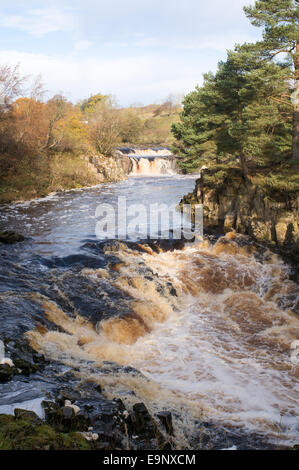 Autumn view of Low Force waterfall in Teesdale, north east England, UK - Stock Photo