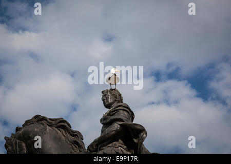 A seagull sits on top of the statue of William III by John Michael Rysbrack and erected in Queen Square, Bristol - Stock Photo