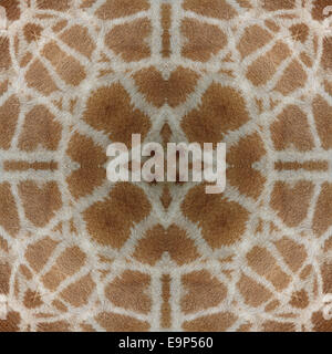 Seamless pattern made from Giraffe (Girafta camelopardalis) skin - Stock Photo