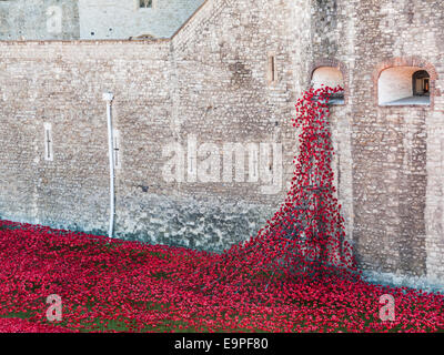 Red ceramic poppies at The Tower Of London Remembers exhibition, Blood Swept Lands and Seas of Red, by Paul Cummins - Stock Photo