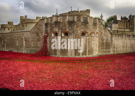 Poppy installation at the Tower of London showing tower and poppy waterfall - Stock Photo