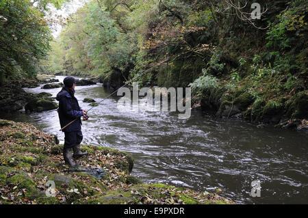 Fisherman on the banks of the Tefi River at the end of the salmon fishing season Ceredigion Wales Cymru UK GB - Stock Photo