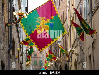 Siena, Tuscany, Italy. Colourful flags marking territory of the Drago contrada in Via della Sapienza.