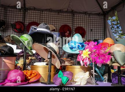 Arcadia, CA, USA. 31st Oct, 2014. October 31, 2014: Scene at Breeders' Cup at Santa Anita Park in Arcadia, California. - Stock Photo