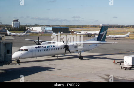 WestJet Q400 aircraft by Bombardier at Thunder Bay airport, Ontario, Canada. - Stock Photo