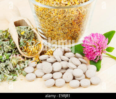 healing herb in glass cup, tablets, herbal medicine - Stock Photo