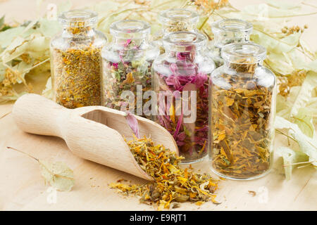 healing herbs in glass bottles, herbal medicine - Stock Photo
