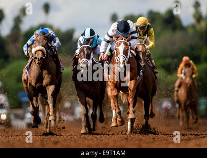 Arcadia, CA, USA. 2nd Nov, 2014. November 01 2014: Take Charge Brandi, ridden by Victor Espinoza and trained by - Stock Photo