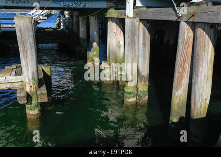 Sopot, Poland Wooden pier in the Baltic Sea - Stock Photo