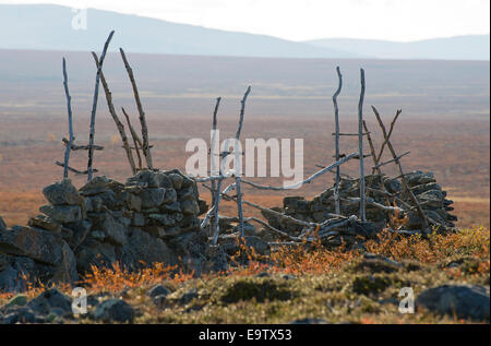 Gate of old Erttetvarri reindeer fence - Stock Photo
