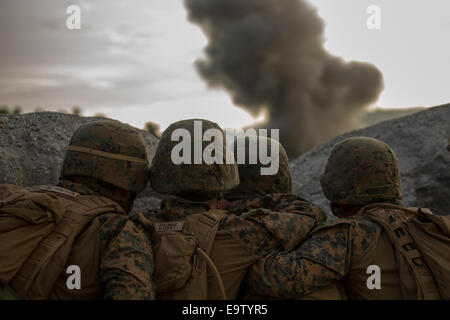 U.S. Marines with Battalion Landing Team, 3rd Battalion, 5th Marine Regiment, 31st Marine Expeditionary Unit observe - Stock Photo