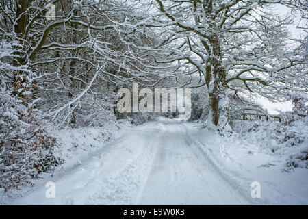 Narrow, snow covered countryside road. - Stock Photo