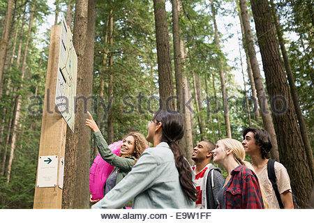 Friends looking at hiking trail map in woods - Stock Photo