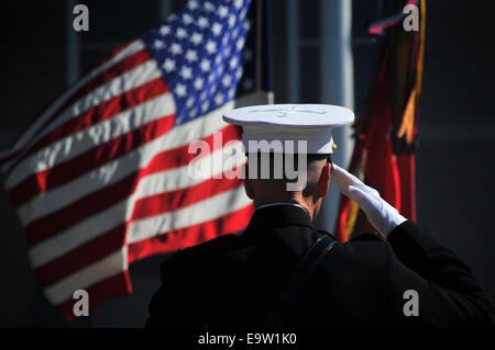 U.S. Marine Corps Gen. James F. Amos, the outgoing commandant of the Marine Corps, salutes the colors during the - Stock Photo