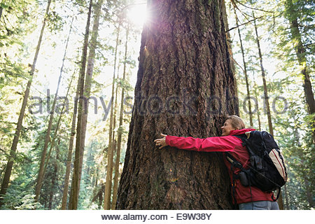Woman hugging tree in sunny woods - Stock Photo