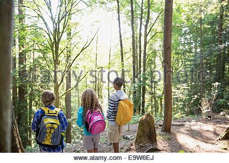 Boys and girl with backpacks hiking in woods - Stock Photo