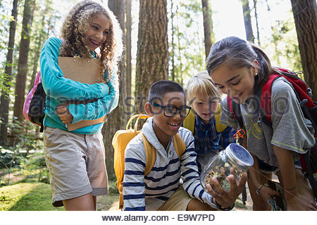 Children in woods looking at plants in jar - Stock Photo