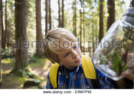 Curious boy in woods examining plants in jar - Stock Photo