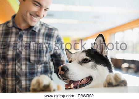 Man dropping off Husky at dog daycare - Stock Photo