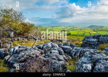 Limestone pavement on Holmepark Fell near Burton-in-Kendal Cumbria - Stock Photo