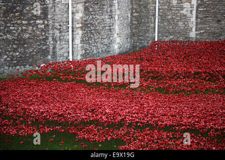 A sea of red poppies line the moat at The Tower of London - Stock Photo