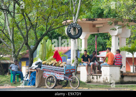Dominikanische Republik, Osten, Kokosnussverkäufer an der Strassenkreuzung 103 / 104 nördlich von Otra Banda - Stock Photo
