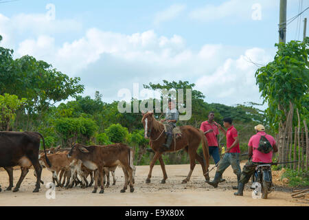Dominikanische Republik, Osten, Uvero Alto, beim Dorf Las Lisas - Stock Photo