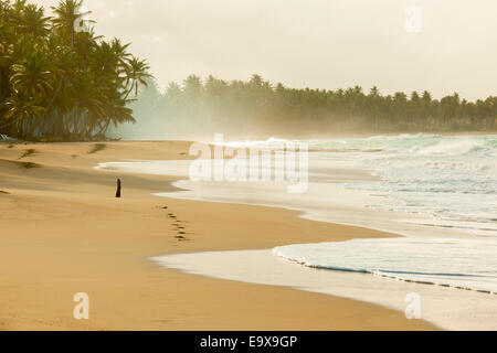 Dominikanische Republik, Osten, El Cedro, Strand Playa Limon - Stock Photo