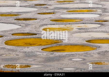 Spotted Lake, near Osoyoos, British Columbia, Canada - Stock Photo