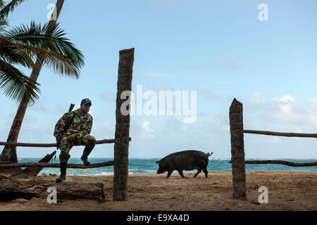 Dominikanische Republik, Osten, El Cedro, am Strand Playa Limon - Stock Photo
