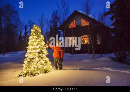 Cabin,Alaska,Christmas Tree,Rural - Stock Photo