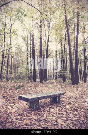 Retro filtered picture of bench in a forest. - Stock Photo