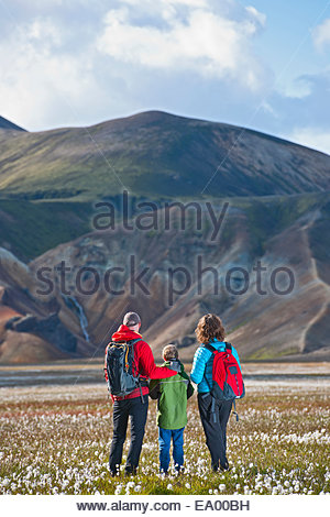 Mature couple and son standing in the cottongrass meadow at Vondugil, Landmannalaugar, Fjallabak, Iceland - Stock Photo