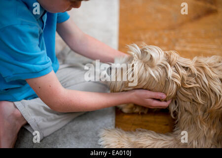 Young boy playing with dog - Stock Photo