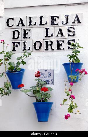 Street sign and flowers, Calleja de las Flores, Córdoba, Andalusia, Spain Stock Photo