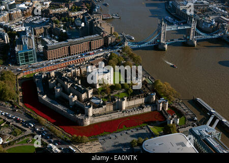 The Tower Of London With The River Of Poppies As Seen From The Air - Tower of london river of poppies