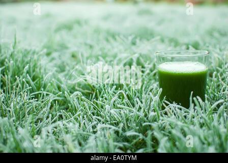 healthy green detox juice - Stock Photo