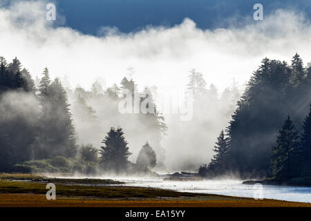 An early morning mist rises from the river and coastal rainforest of the Tongass National Forest in Southeast Alaska, - Stock Photo