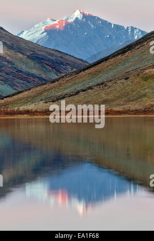 Alpenglow lights up the peak of the mountain reflected in a remote alpine tundra lake in the Alaska Range Mountains - Stock Photo