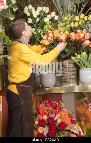 Award winning florist arranging rich flower arrangement - Stock Photo