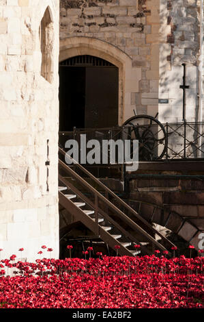 Tower of London Poppies art exhibition 2014 - Stock Photo