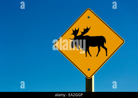 Close up of moose road sign and blue sky; Alberta, Canada - Stock Photo