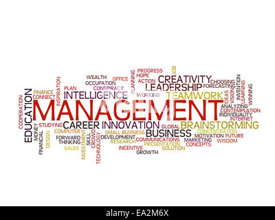Management strategy concept word cloud - Stock Photo