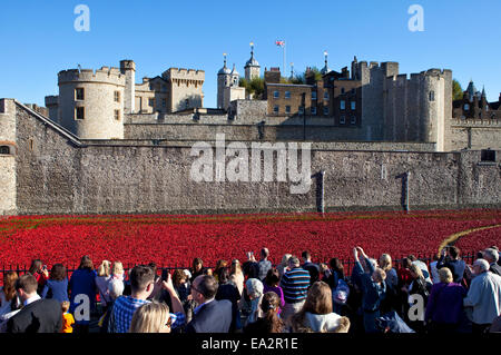 LONDON, UK - OCTOBER 28TH 2014: The public viewing the ceramic Poppies of the 'Blood Swept Lands and Seas of Red' - Stock Photo