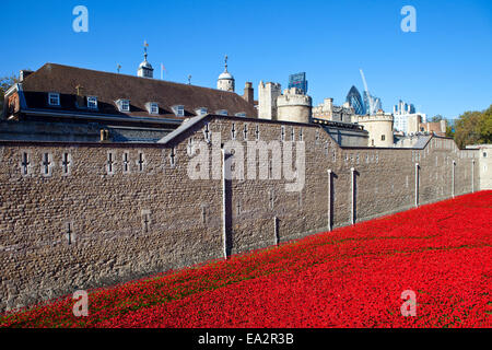 A view of the ceramic Poppies of the 'Blood Swept Lands and Seas of Red' installation at the Tower of London.  The - Stock Photo